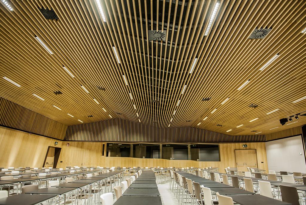 Construcción del auditorio del santuario de Loyola