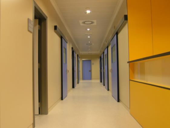 La Zarzuela Hospital, Madrid